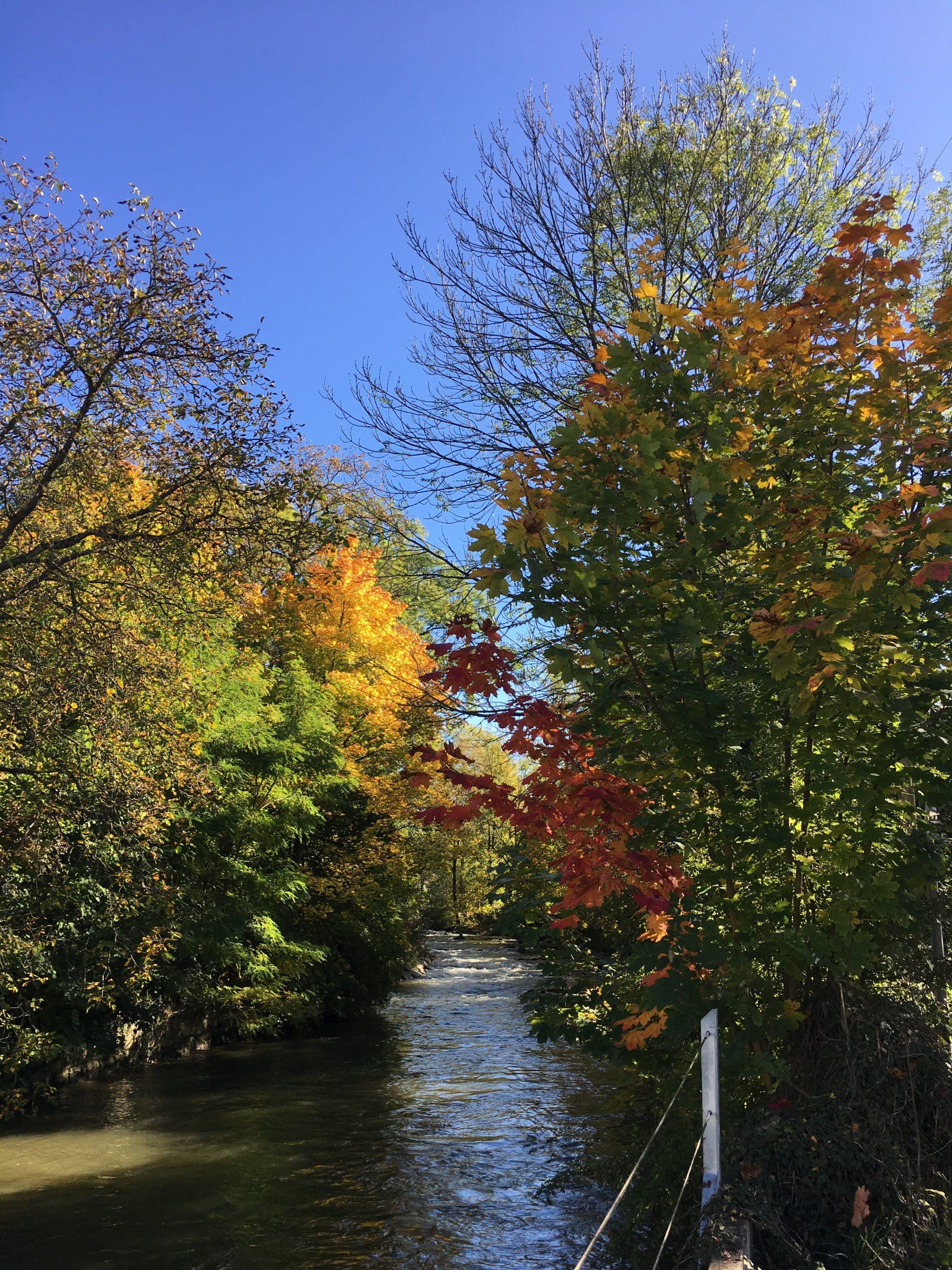 Herbst an der Suhre